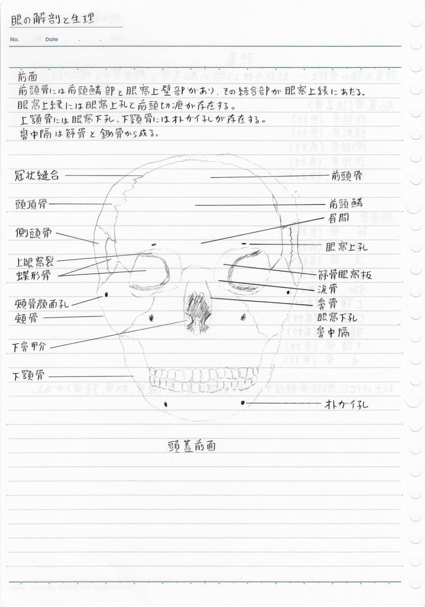 f:id:shinjyojimichiru:20190904213505j:plain