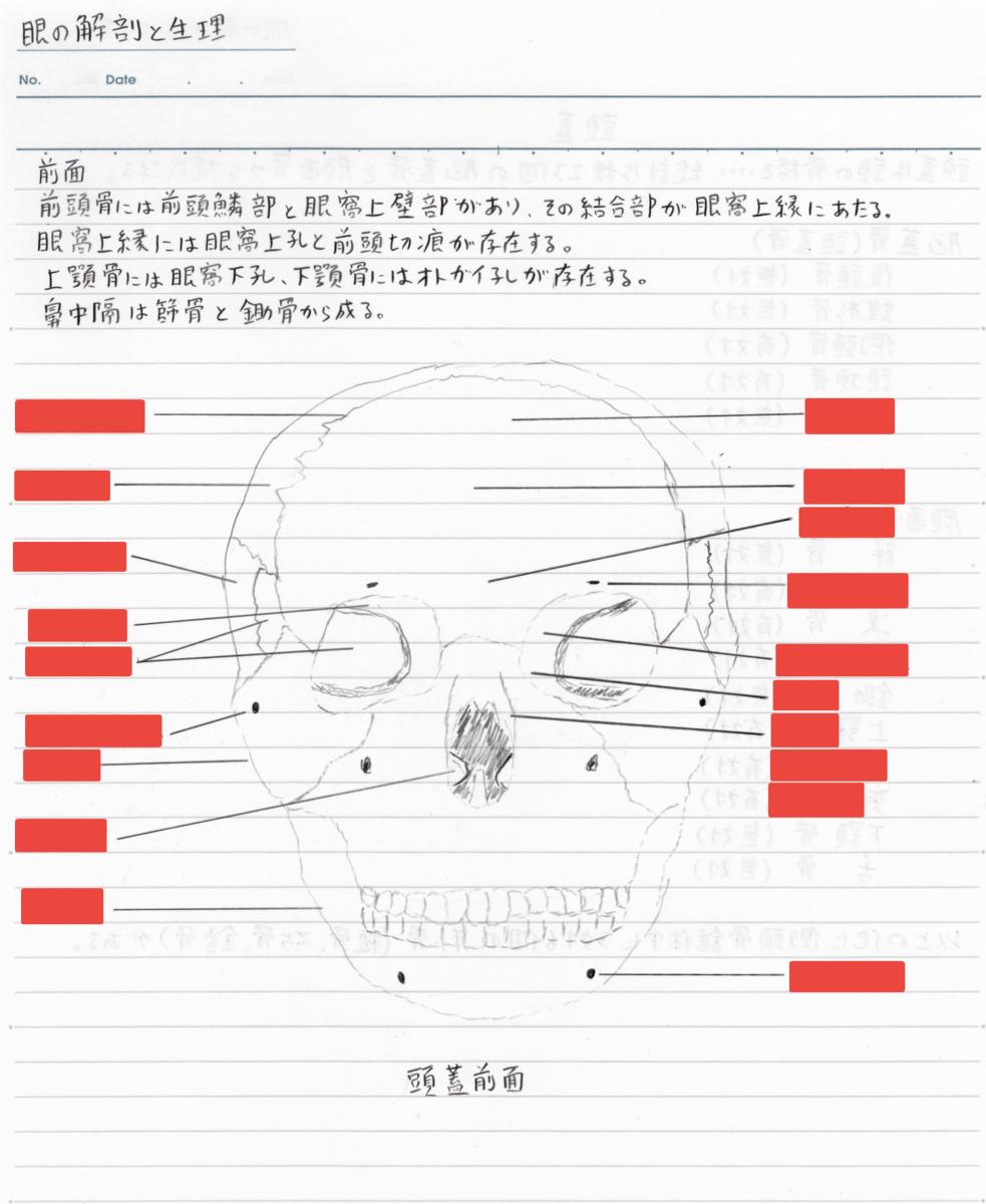 f:id:shinjyojimichiru:20190904213856p:plain