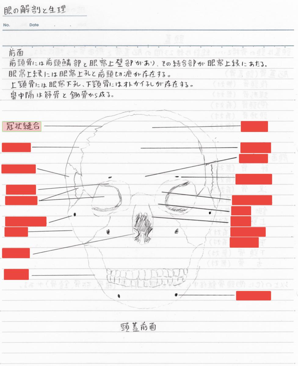 f:id:shinjyojimichiru:20190904213949p:plain