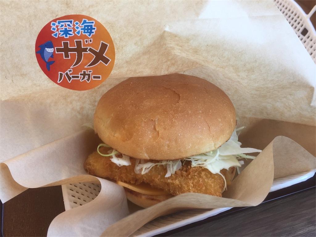 f:id:shinkaikaiga:20170226103444j:image
