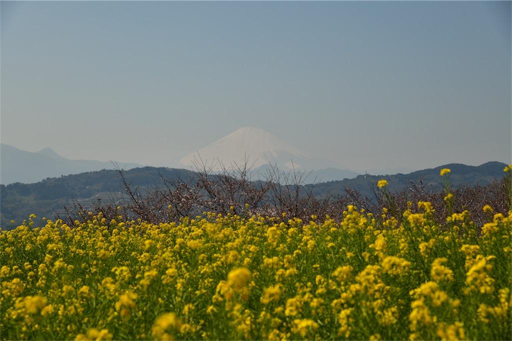 f:id:shinmuraoka:20180325224017j:image