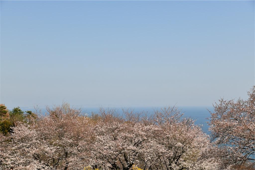 f:id:shinmuraoka:20180325224314j:image