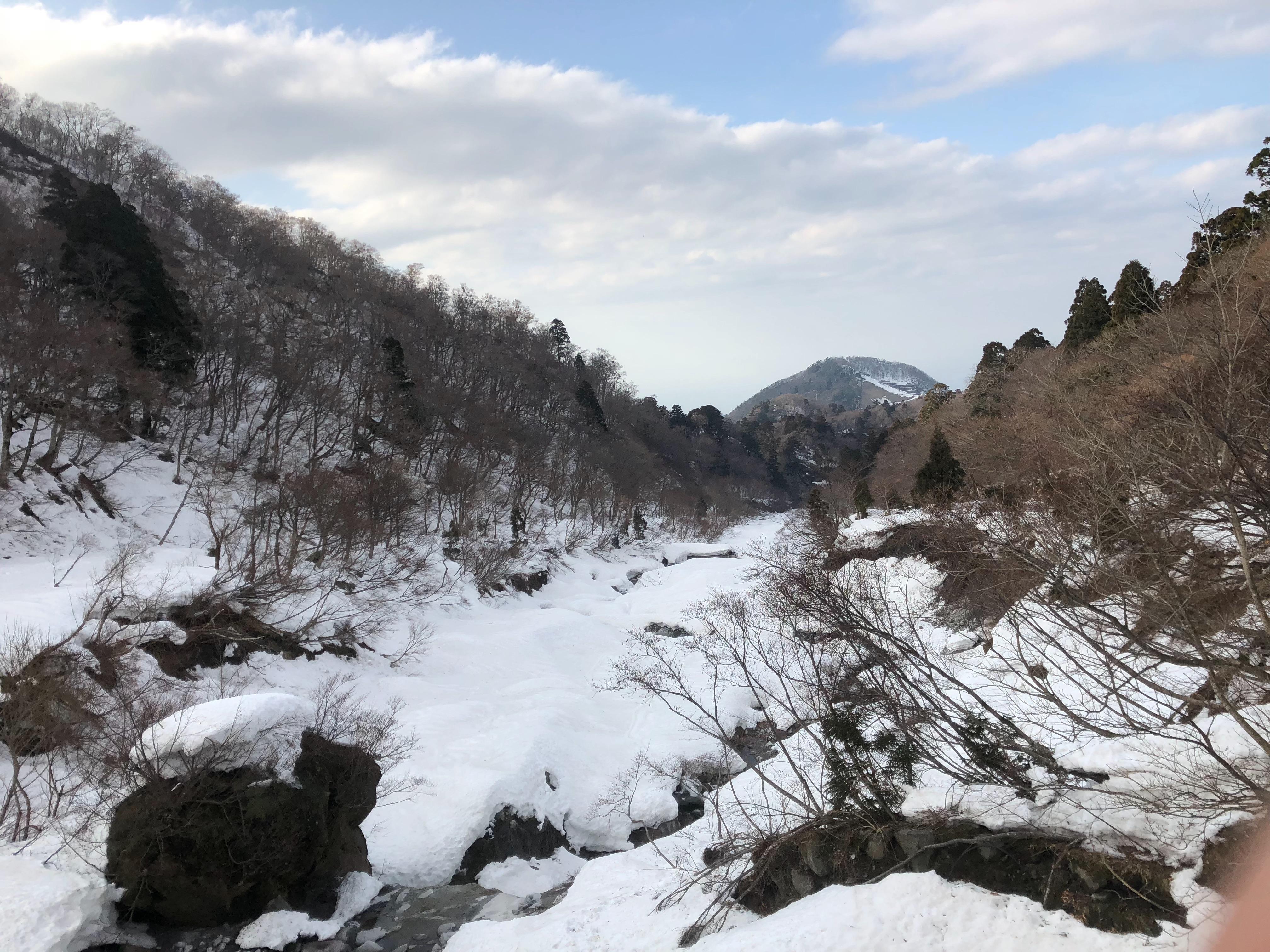 f:id:shinnosuke-hrta:20180408210837j:image