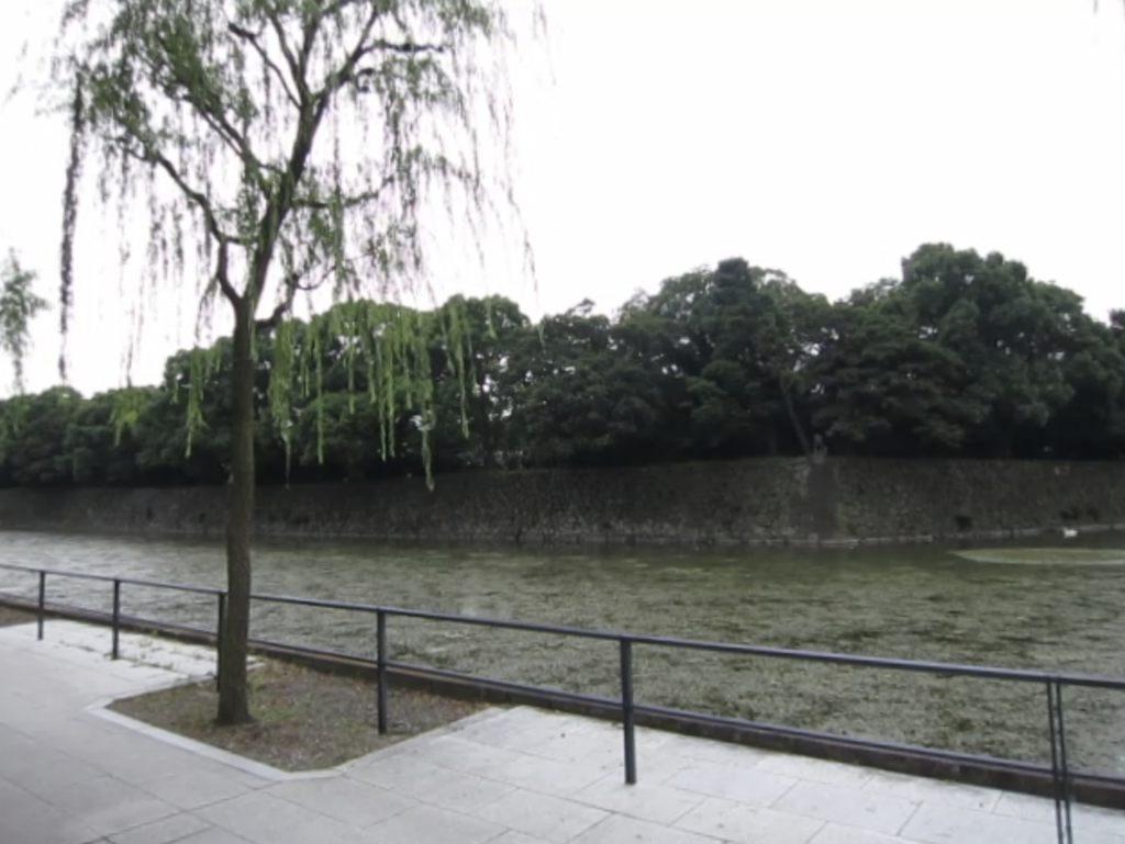 f:id:shinnosukee:20170910184909p:plain