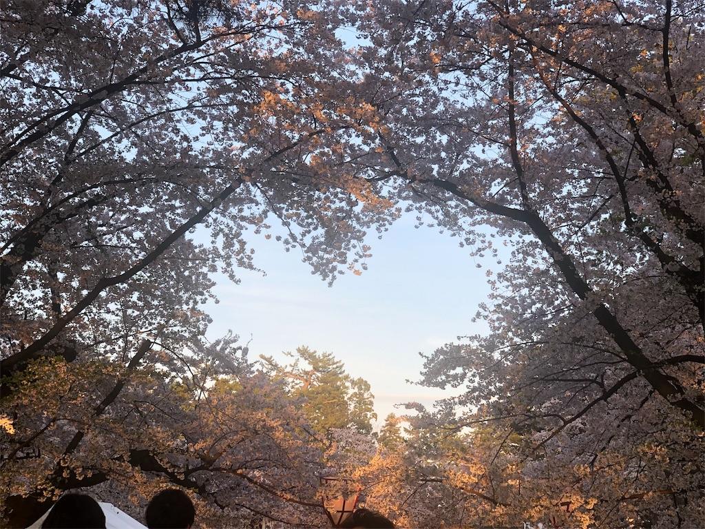 f:id:shino24aus:20190508183258j:image