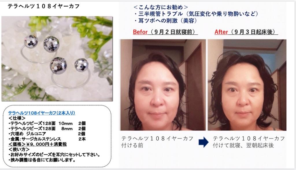 f:id:shino24aus:20190913204804j:image