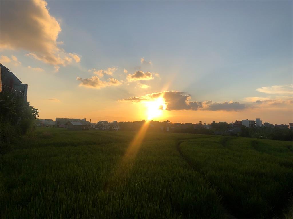 f:id:shino24aus:20200405184650j:image
