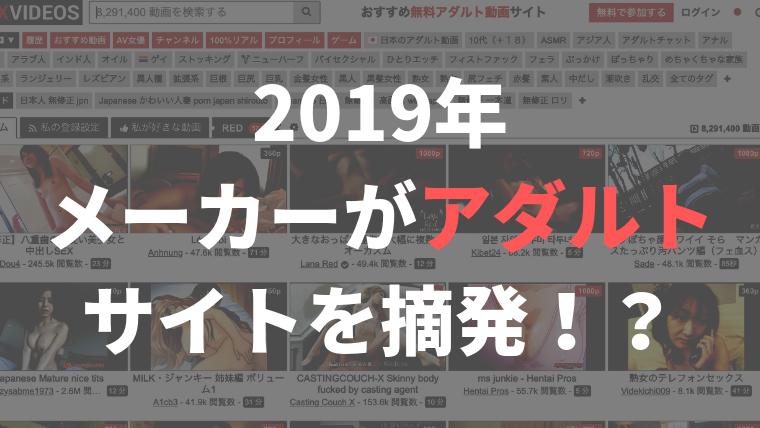 2019年メーカーがアダルトサイトを摘発!?