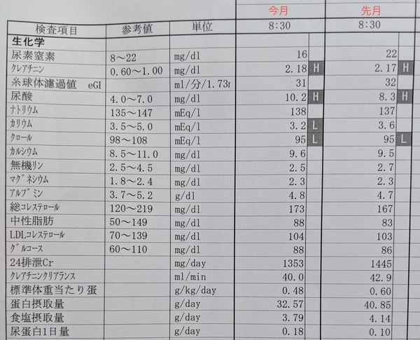 2019年8月の検査結果