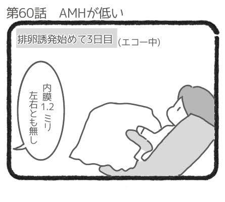 AMHが低い1