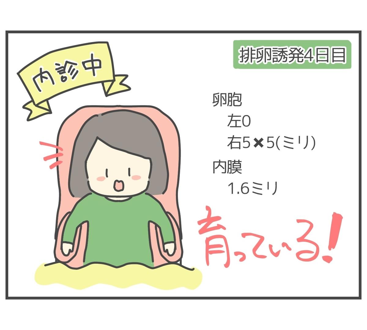 2度目の排卵誘発4