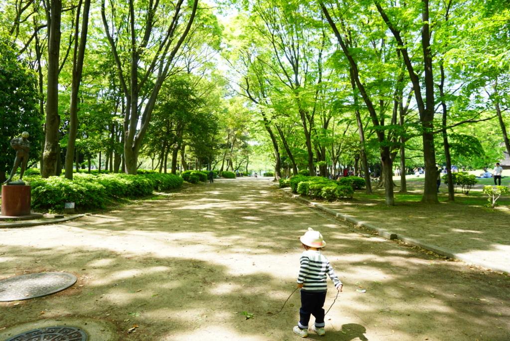 f:id:shino_mizobuchi:20170502062139j:plain