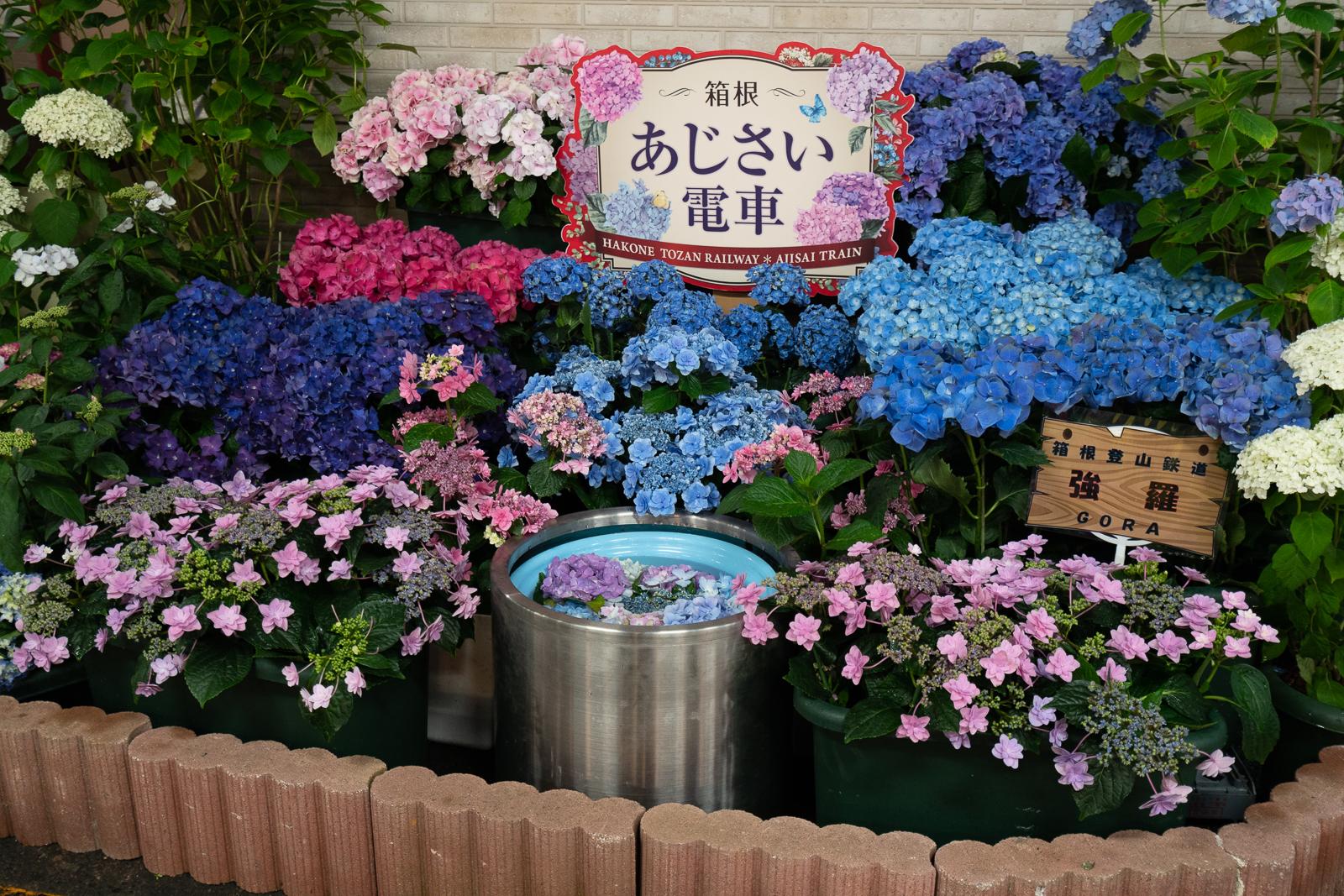 f:id:shino_nsx:20180620200116j:plain