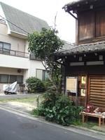 f:id:shinobazukun:20070421145439j:image:h150