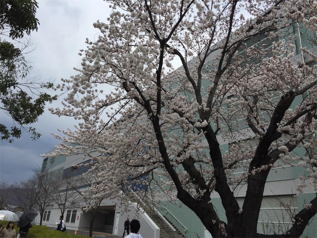 f:id:shinobee320:20170415150900j:image