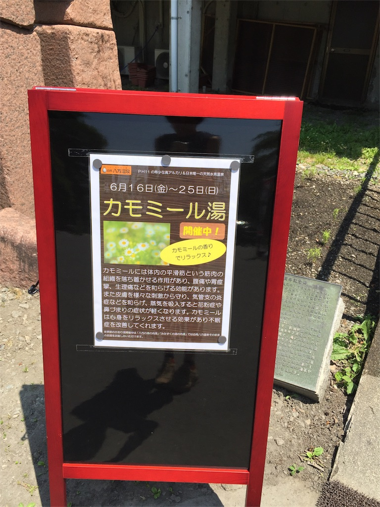 f:id:shinobee320:20170620233029j:image