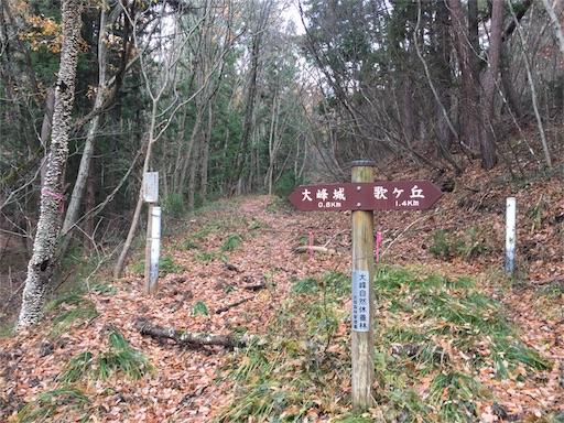 f:id:shinobee320:20171125200653j:image