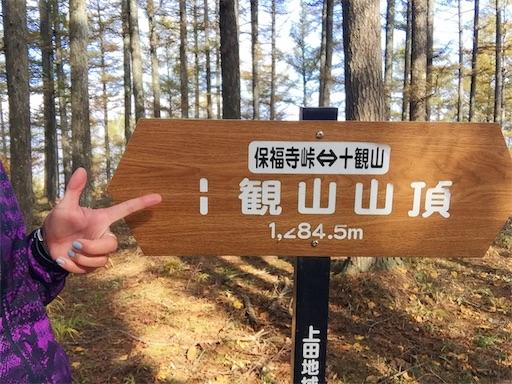 f:id:shinobee320:20181026174042j:image