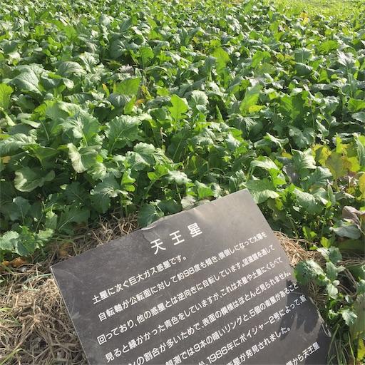 f:id:shinobee320:20181118152849j:image