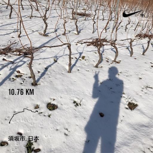f:id:shinobee320:20181231164415j:image