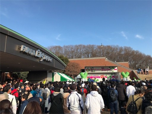 f:id:shinobee320:20190224201525j:image