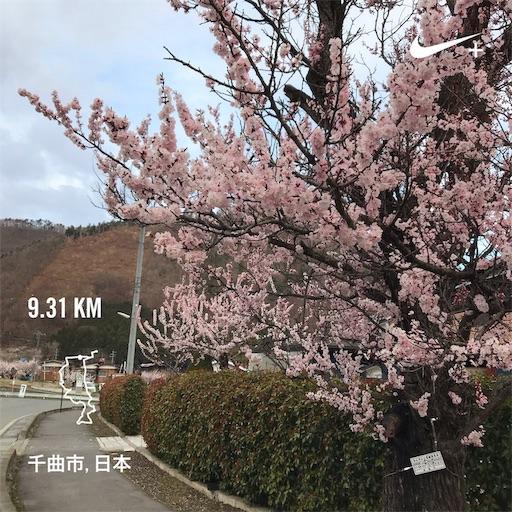 f:id:shinobee320:20190412084246j:image