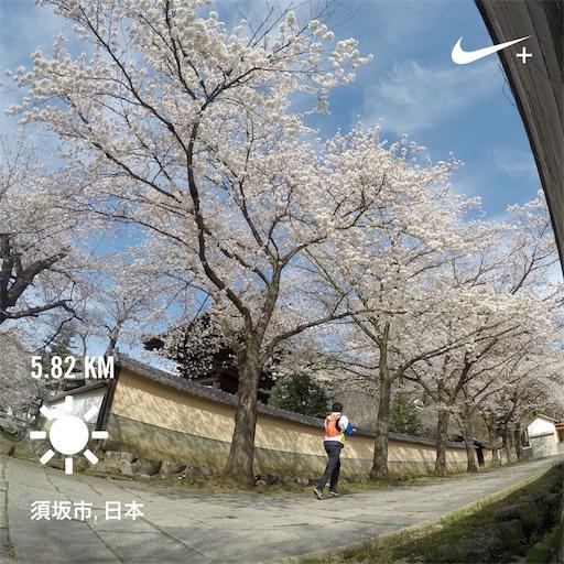 f:id:shinobee320:20190419083804j:plain
