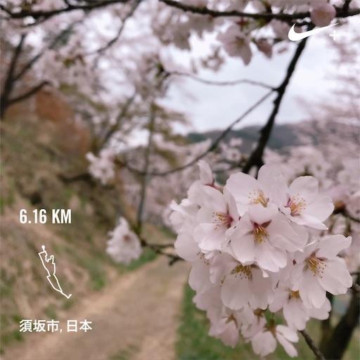 f:id:shinobee320:20190420073950j:image