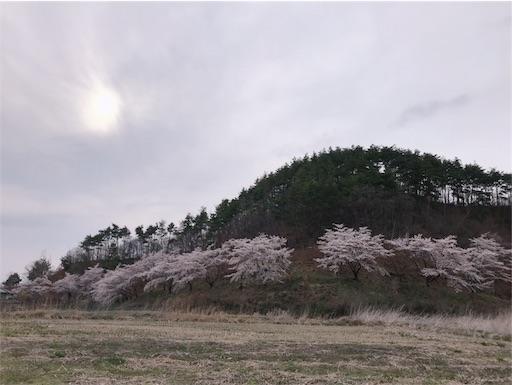 f:id:shinobee320:20190420074000j:image