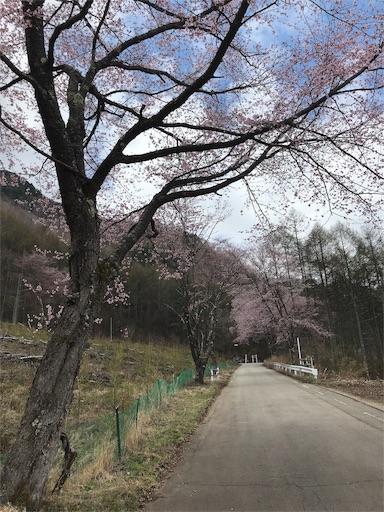 f:id:shinobee320:20190506193226j:image