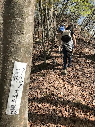 f:id:shinobee320:20190510203119j:image