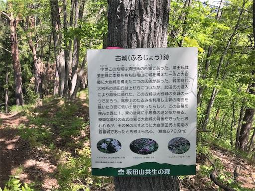 f:id:shinobee320:20190510203210j:image