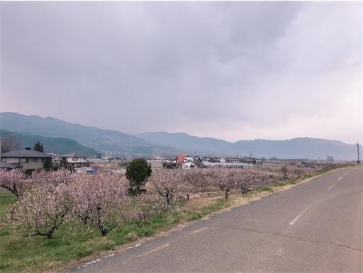 f:id:shinobee320:20200322173946j:image