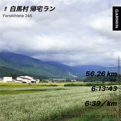 f:id:shinobee320:20200918131057j:image