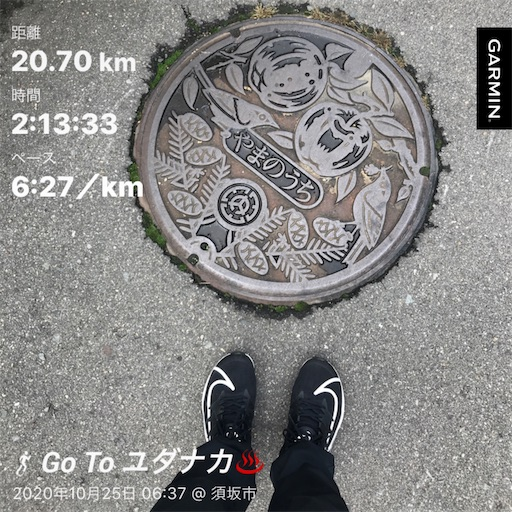 f:id:shinobee320:20201025134922j:image
