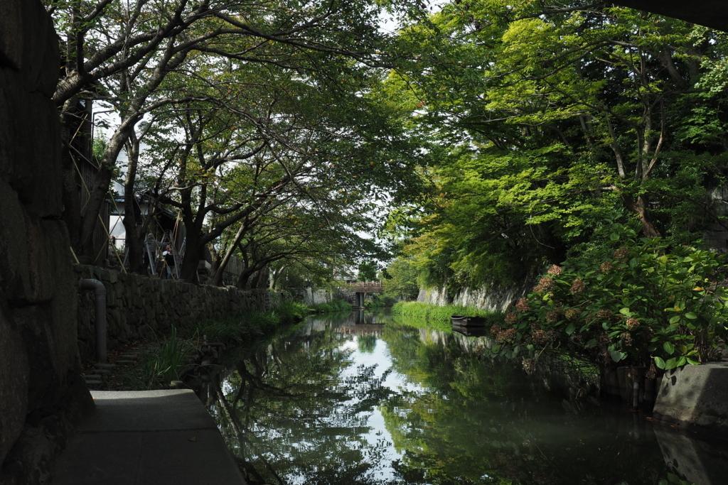 f:id:shinobu-natsume:20180414102115j:plain