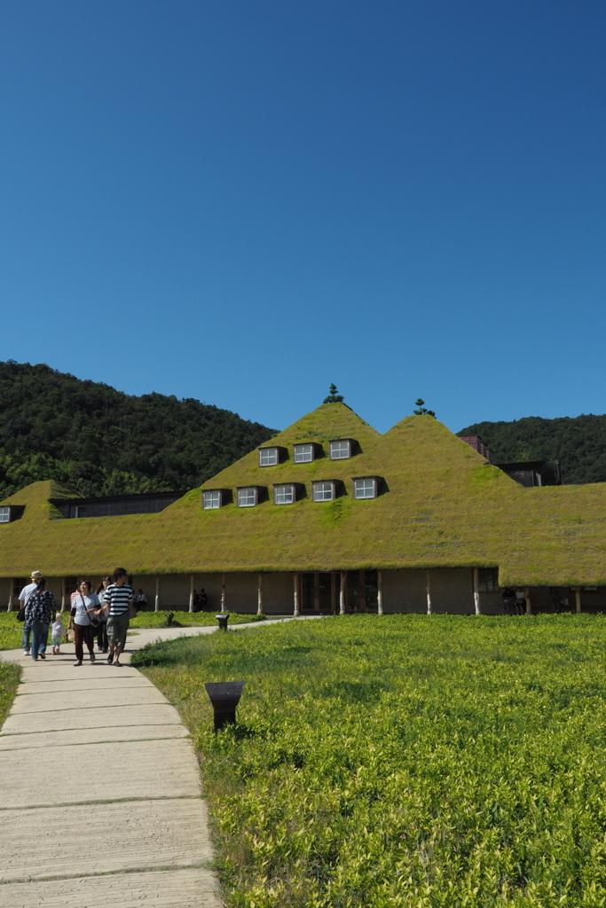 f:id:shinobu-natsume:20180421155034j:plain