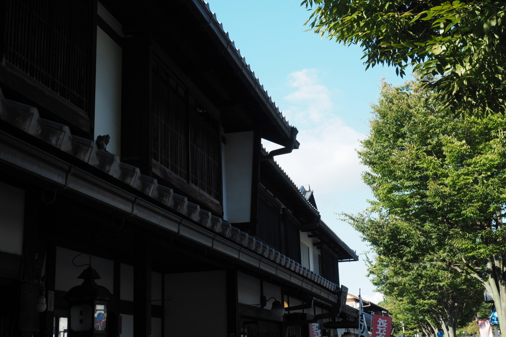 f:id:shinobu-natsume:20180422001947j:plain