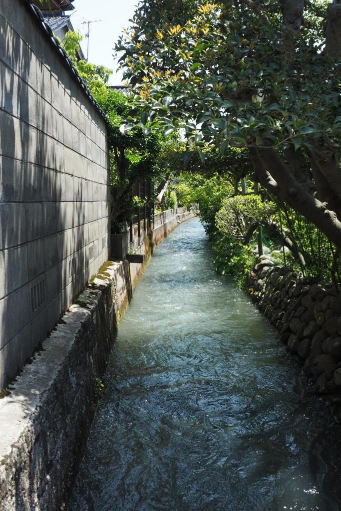 f:id:shinobu-natsume:20180503134252j:plain