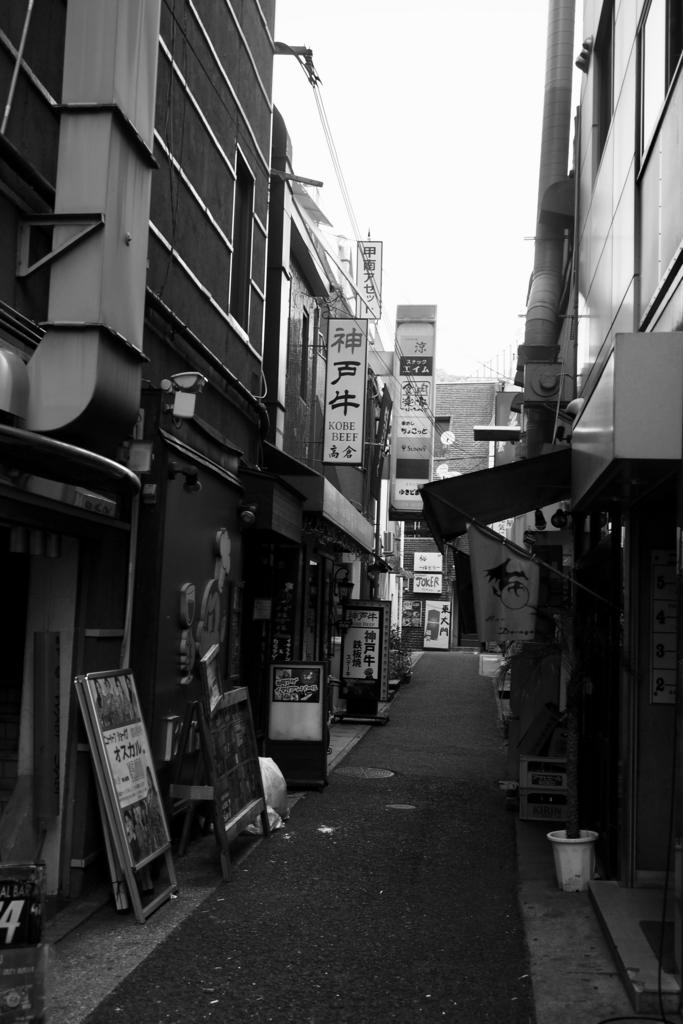 f:id:shinobu-natsume:20180506183354j:plain
