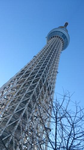 f:id:shinobu11:20130129215757j:image