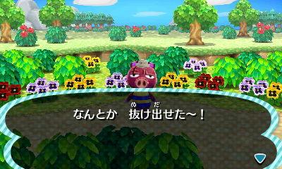 f:id:shinobu11:20161127132527j:plain