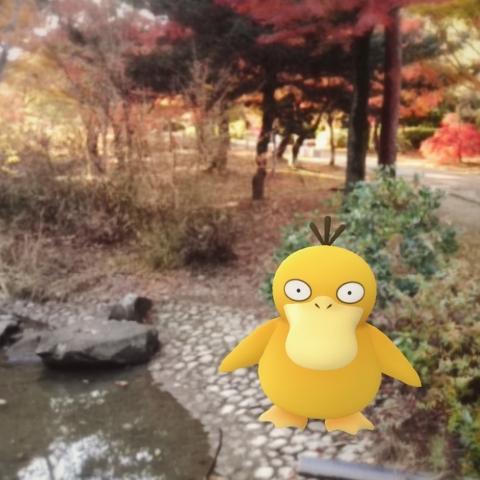 f:id:shinobu11:20170306145133j:plain