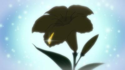 f:id:shinobu11:20170319155434j:plain:h200