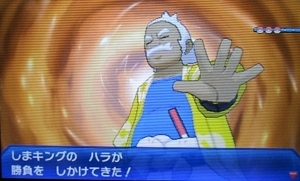 f:id:shinobu11:20171211092203j:plain