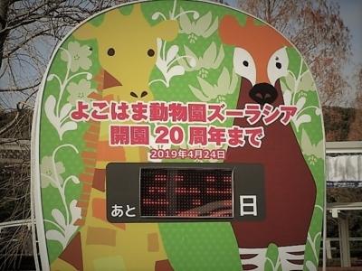 f:id:shinobu11:20180128222048j:plain