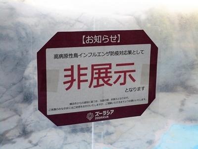 f:id:shinobu11:20180128222108j:plain