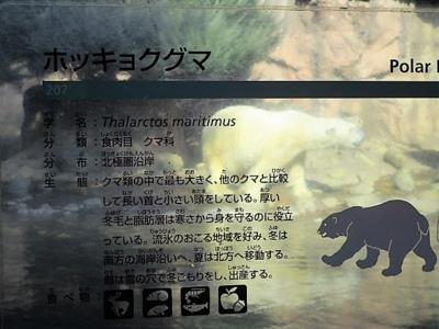 f:id:shinobu11:20180128222118j:plain
