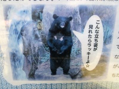 f:id:shinobu11:20180128222130j:plain