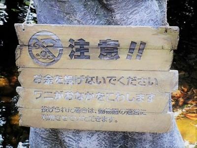 f:id:shinobu11:20180128222133j:plain